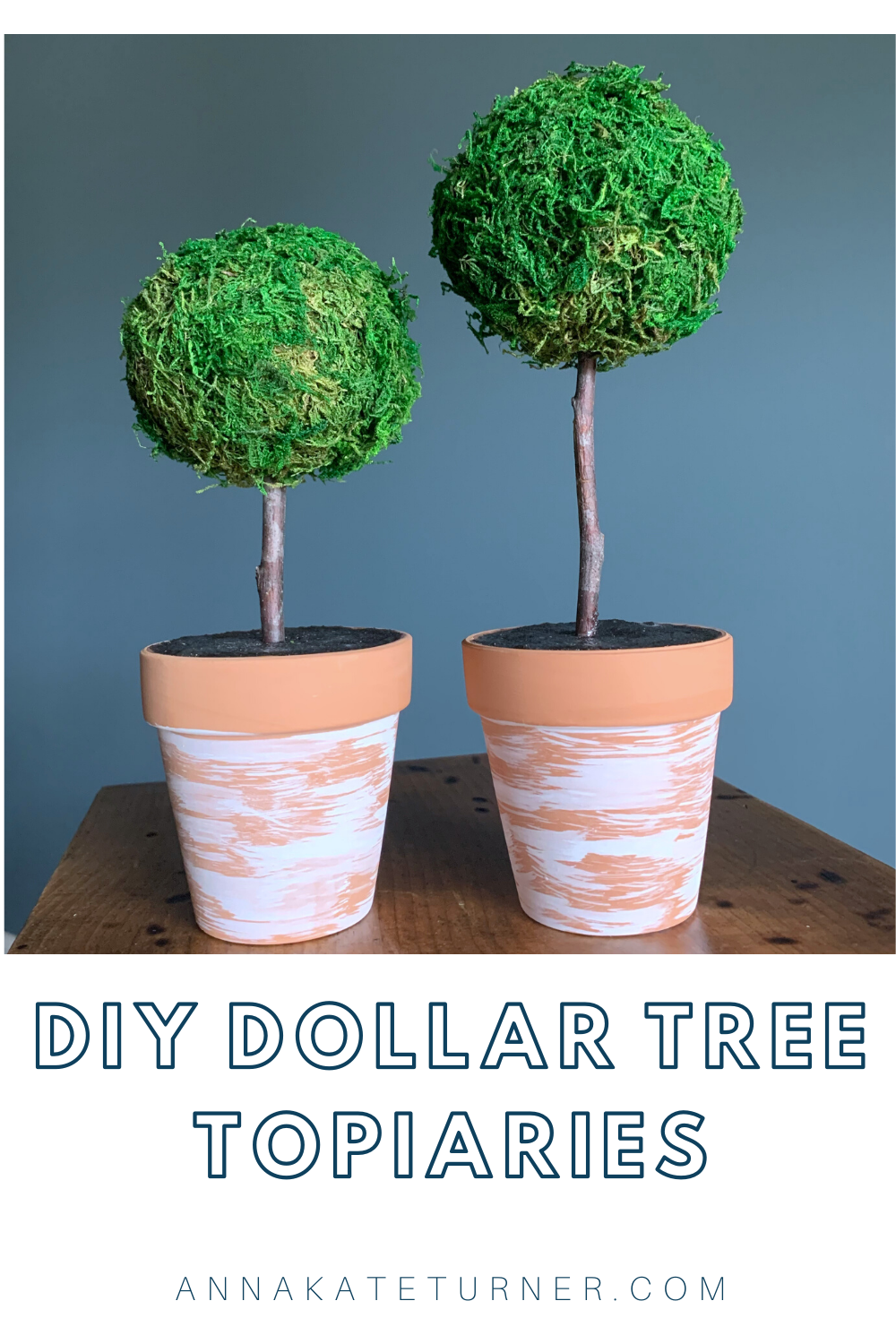 Diy Moss Topiaries Turner Littles